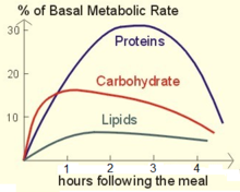 Basal Metabolic Rate increases more when protein is ingested.